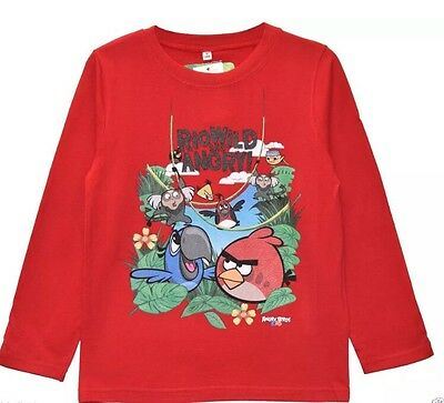 Boys Long Sleeved Top - 12 Years - Angry Birds - New with Tags