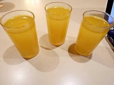 Realistic Life Size Faux Artificial Fake Food: 1 Glass of Orange Juice