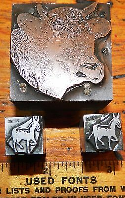 Letterpress Printing Printer Block Press Wood Metal Type Copper Steer 2 Donkeys