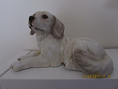 """Dogs and ornaments latex mould/mold of a Golden retriever 8""""  x  4"""" x 5"""" tall"""
