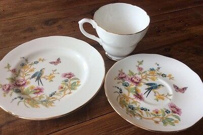 Trio Duchess Mixed Crazy TeaSet Cup Saucer Plate Bird Teacup Coffee Collectable