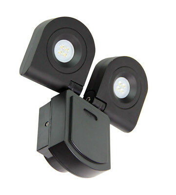 NEW Curo Adjustable Flood Light
