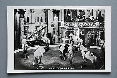 R&L Postcard: Emily Paulo Ponies, Horse, Circus Theatre Show