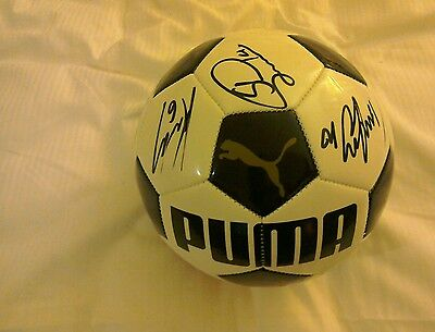 Signed Fulham Ball. Brand New. Signed by 2016/17 Squad.