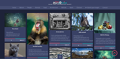 Established Profitable PHOTO Sharing Membership BUSINESS Website For Sale