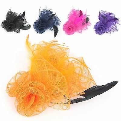 Womens Ladies Net Flower Feather Fascinator on Beak Clip and Headband Hair band