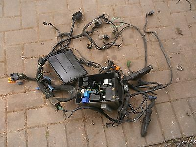 Bmw K1100 Lt Rs K100 16V K100 Unmolested Wiring Loom Harness