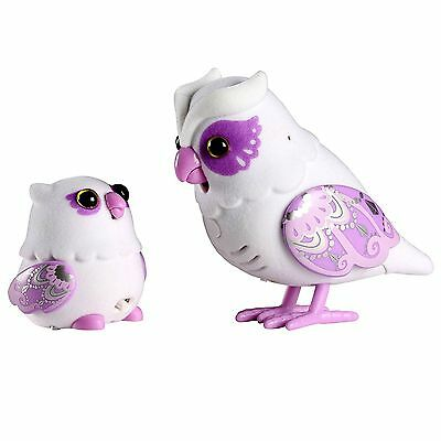 Little Live Pets Tweet Talking White Owl Baby Ages 5+ Toy Bird Play Graceling