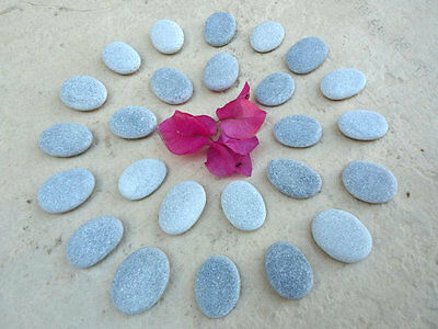 25 Oval Beach Pebbles - Finest Quality Flat Smooth Stones