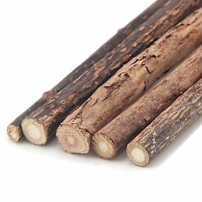 Silvervine Sticks Asian Catnip Japanese Matabi Activity Cat Toy 5 Sticks
