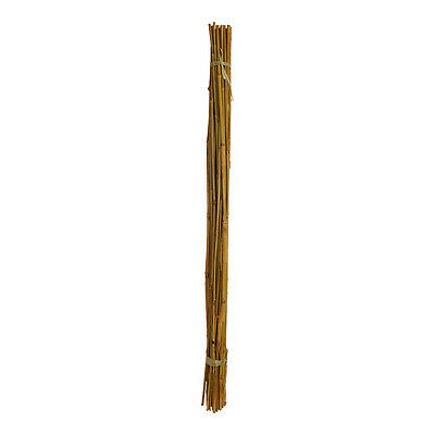 Bamboo Sticks 4 FT. x 5 BATCHES (125 Pieces) Hydroponics Plant Support