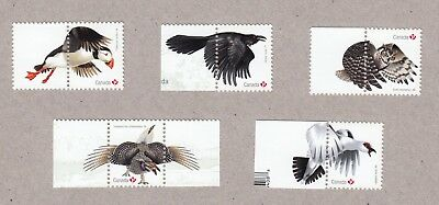 ca. PUFFIN, OWL, RAVEN, EXOTIC BIRDS Souv Sheet Stamps with tabs MNH Canada 2016