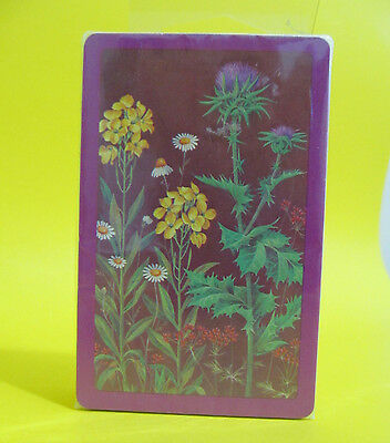 Graphica Deck of Playing Cards  Wildflowers Purple Illustrated SEALED