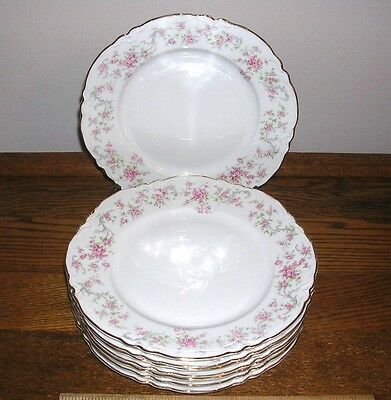 set of 8 DINNER PLATES- THE RICHELIEU pattern by Hutschenreuther SELB BAVARIAN