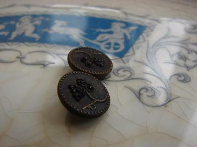 2 Beautiful Genuine Antique Buttons~Metal with French Jet Grapes~Unusual