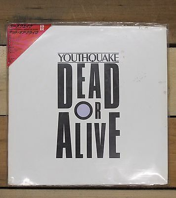 Dead Or Alive Youthquake Picture Disc