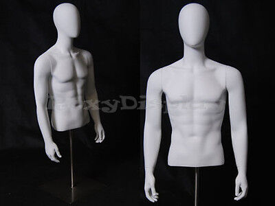 Table Top Egghead Male Mannequin Torso With nice figure and arms #EGTMSA-MD