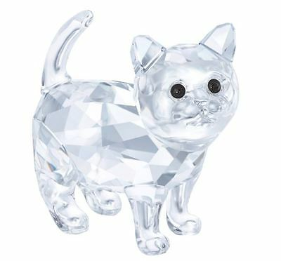 Swarovski Crystal Creation 5269815 Baby Cat RRP $119