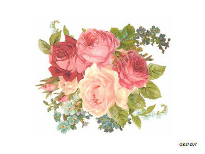 BReaThTaKinG! XL MiXeD RoSeS ShAbBy WaTerSLiDe DeCaLs ~FurNiTuRe SiZe~