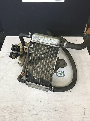 Gilera Dna 50 Radiator And Expansion Chamber