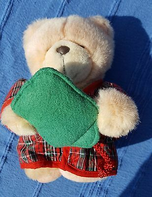 Forever Friends Teddy Bear Hot Water Bottle Dressing Gown Soft Plush Stuffed Toy