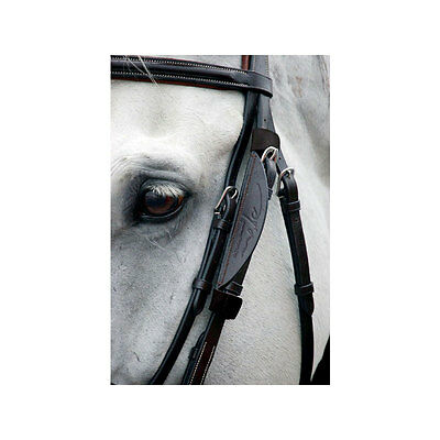 Dy'on Leather Horse Blinkers