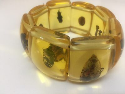 Vintage Large Amber stretch beaded bracelet with Bugs Dissected