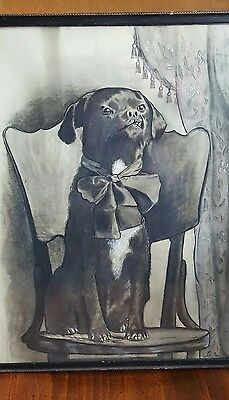 19th Century Dog Drawing 'RUBBER'
