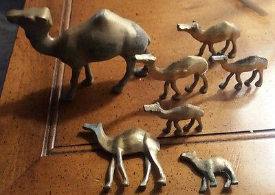 Lot of 7 Vintage Brass Camels Figurines Miniatures Collectible