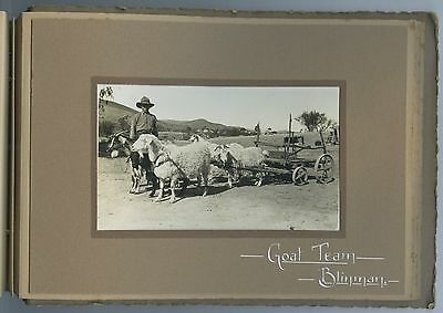 C1920 Photograph Album 12 Postcard Size Photos Blinman / Mining South Australia.