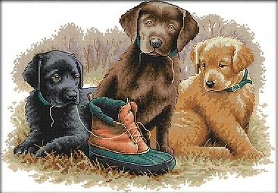 Three Dogs. 14CT counted cross stitch kit. Craft brand new.