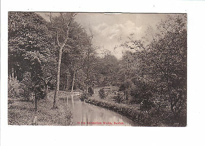Vintage  Postcard.In the Serpentine Walks,Buxton.Posted 1911