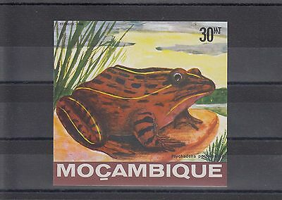 Timbre Stamp  Bloc Mozambique Y&t#13  Grenouille Frog  Neuf**/mnh-Mint 1985 ~A09