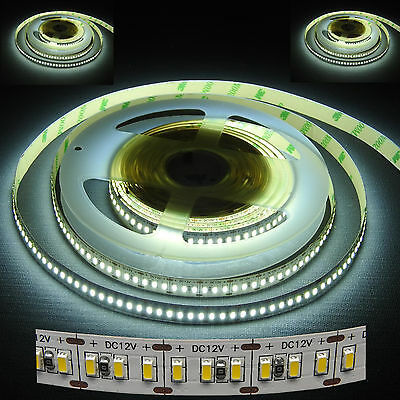 LED Strip 3014 240LED-1M 6000K 12V IP33 kaltweiß 80 Watt 14400 Lm/5 Meter