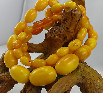 56,7 Gramm natural Baltic Butterscotch Amber Bernstein Kette Necklace antik