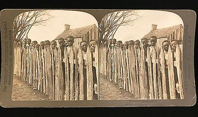 """1901 Rare RACIST STEREOVIEW Black Americana, H.C. White, """"All Coons Look Alike"""""""