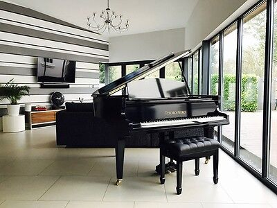 Tesoro Nero Black Baby Grand Piano for Pianists