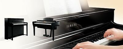 Yamaha Clavinova Key - Artificial Ivory Type With Escapement Sensing