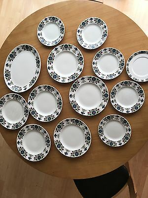 13 Vintage Midwinter Marquis of Queensberry Staffordshire Plates Country Garden