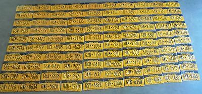 """Lot of 100 NEW YORK  EMPIRE STATE GOLD """" NY Bulk Set Graphic License Plate"""