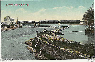 Vintage Postcard - Salmon Fishery, Galway - Valentines - Unposted