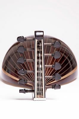 Professional Oud / FREE HARD CASE /FREE SHIPPING/HandMade!/ NEW!!!!!!!!