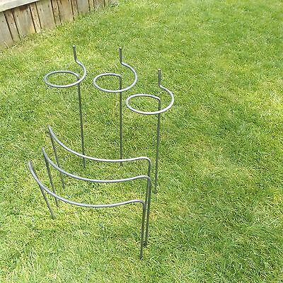 """Mixed Set of 6 Heavy Duty Handmade Metal Plants Supports - Solid 5/16"""" Bar"""