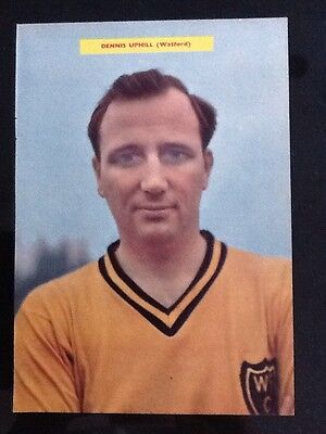 1950/60s A4 football magazine picture/poster DENNIS UPHILL, Watford