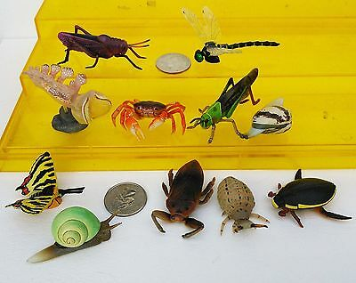 11 Kaiyodo ChocoEgg insects, crab, butterfly, snail, clam, waterbug, beetle HTF!