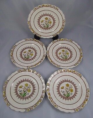 Set of 5 Beautiful Copeland Spode BUTTERCUP Bread & Butter Plates Old Mark EUC