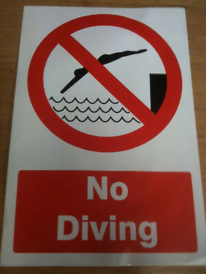 No Diving Sign 200 X 300Mm Self Adhesive Sticky. New.