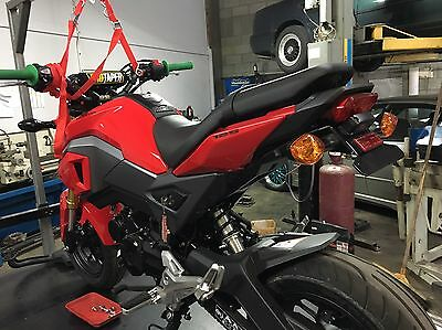 Honda Grom 2016 + Tail Tidy 100% Oem Part Fitment