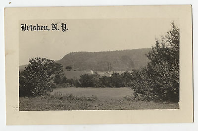 1914 RPPC Brisben, N.Y. Valley, Field, Farm Land, House Postcard