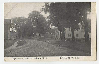 Brisben, N.Y. South Main Street View B/W Postcard - Pub. by M.W. Betts